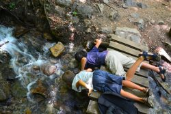 Boys drinking from a stream, Aiguestortes, Spain
