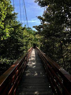 Suspension bridge at Morgan's Rock, Nicaragua