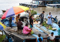 Amazon river market