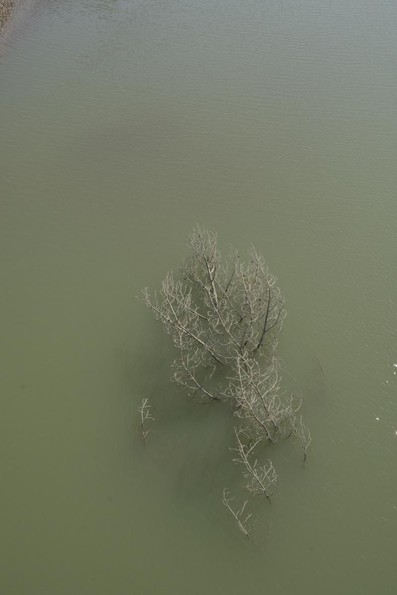 Debajo del agua hubo otra vida.
