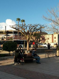 "More sustainability in Marrakech… A ""tree"" holding solar panels to charge your ..."